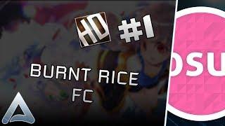 [osu!] BURNT RICE +HD FC