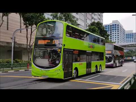(SG❤Bus) 2016, A Year Of Public Bus Industry