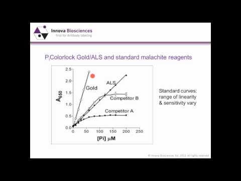 Drug screening assays for phosphate-generating enzymes