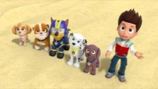 Paw Patrol - Air Pups Clip