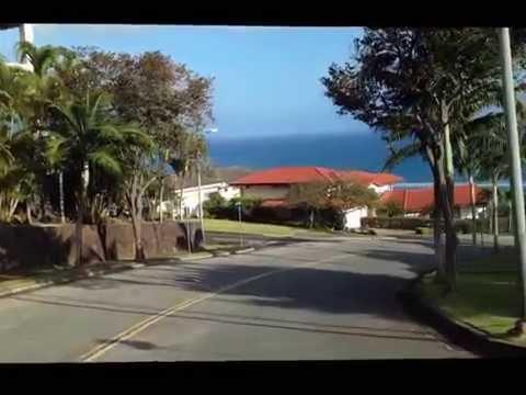 Hawaii Loa Ridge Scenery