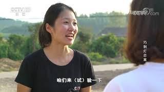 《我爱发明》 20190930 巧剥灯芯草  CCTV科教