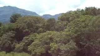 Rio en Valle Nacional en Tuxtepec Oaxaca