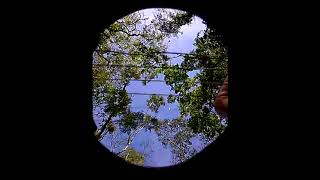 Amazing Grace - Victor López - (Recorded In The Forest.)