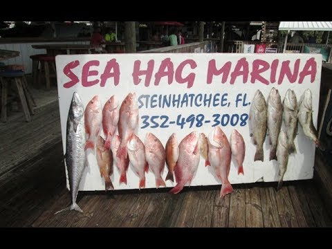 Steinhatchee 2017:  Part 1 2017 Reeling For Kids Red Snapper Mania