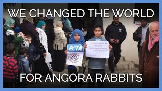 How We Changed the World for Angora Rabbits