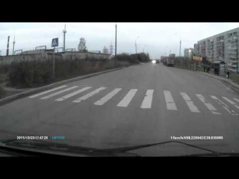 происшествия Вологды корова на дороге хозяева козлы жаль что били не их!
