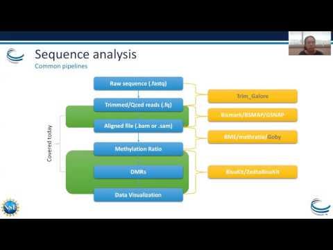 Webinar: Epigenetics Part I – Bisulfite Sequence Analysis and Adenosine to Inosine Modifications