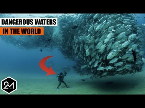 Top 10 Most Dangerous And Deadliest Waters In The World