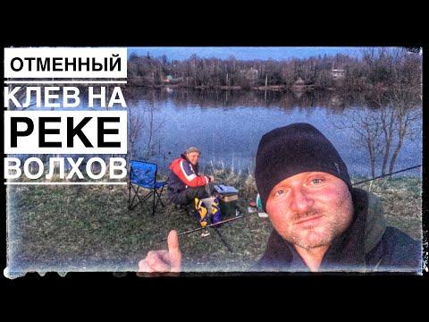 Удачная Рыбалка на реке Волхов