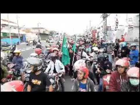 Ribuan Pagarnusa Hijaukan Kota Solo ..