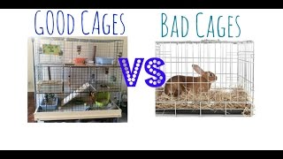 Good Vs. Bad Cages | House Rabbit Edition