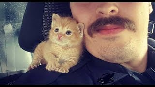 This Cop Gave a Home to a Kitten Rescued From a Dumpster   Now They're Crime Busting Partners