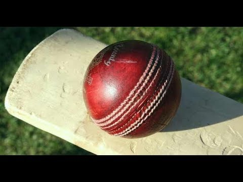 Jamaica Vs Guyana Day of the ABCA Tri-Series Live Streaming