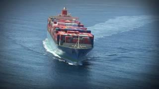 ¿Necesitas Exportar a USA?