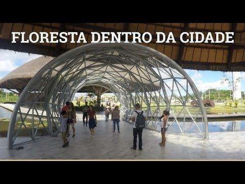Quatro conceitos que dão ao turista a oportunidade de visitar a Amazônia
