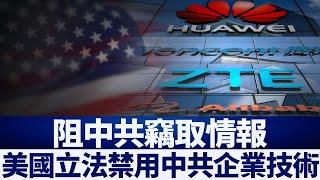 阻中共竊取情報 克魯茲:立法禁用中企技術|新唐人亞太電視|20200503
