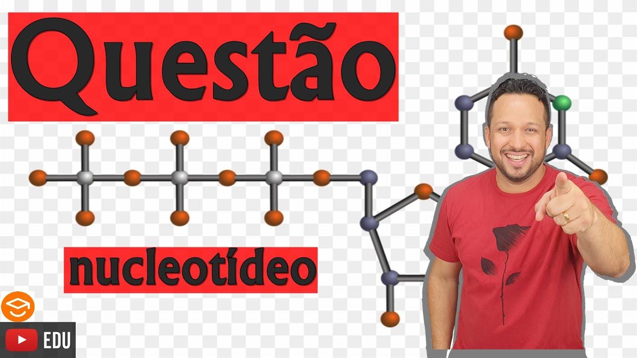 Nucleotídeo - Questão - Ácidos nucleicos - Bioquímica
