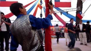Fonda Los Konnotados Parque O'higgins 2010