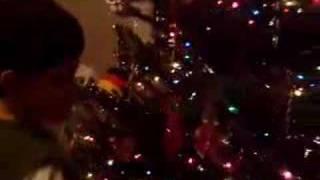 Weihnachtsessiggurke (christmas Pickle)
