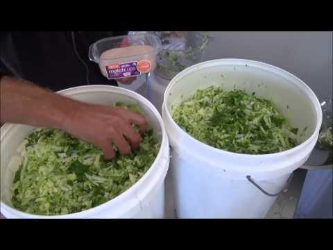 Fermented Food Making 101 - Tsukemono