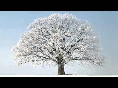 OST Winter Sonata - From the Beginning Until Now - Ryu (처음부터 지금까지 - 류)