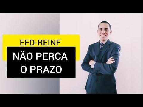 EFD-REINF CRONOGRAMA