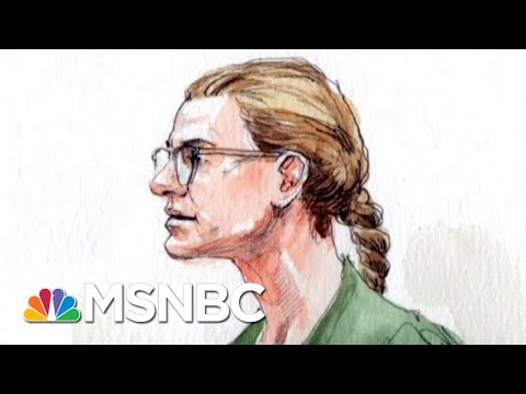 Maria Butina Plead Guilty To Conspiracy. Where Does That Leave The NRA? | MTP Daily | MSNBC