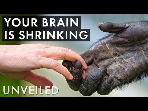 Weird Ways Humans Have Evolved