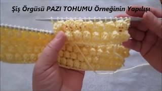 Pazı Tohumu Örneği - Şiş Örgüsü - Biceps Seed Sample - Shish Braid