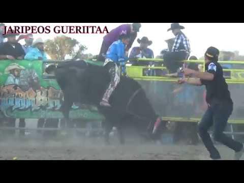 Rancho La Mision en Los Banos, Ca 09/24/17