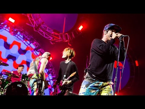 Red Hot Chili Peppers - Nobody Weird Like Me (Live at Rock Am Ring 2016) [HD]