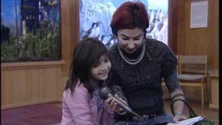 видео Государственный Биологический музей им. К.А. Тимирязева