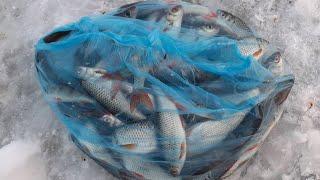 Рыбалка на озере Сунгуль 15 03 2020 Челябинская область