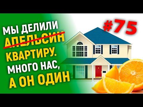 Мы делили апельсин (квартиру)много нас, а он один.