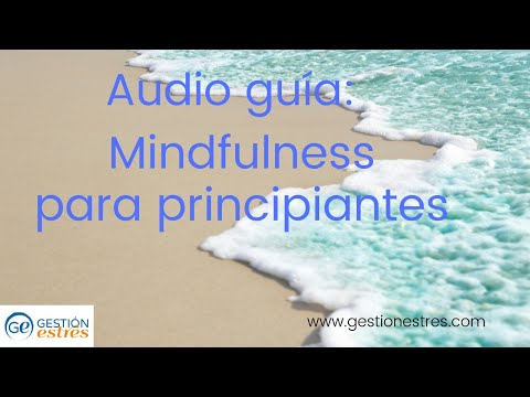 audio:-mindfulness-para-principiantes