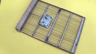Ingenious bird trap