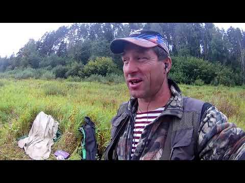 Западная Двина 2019 Попытки ловли леща