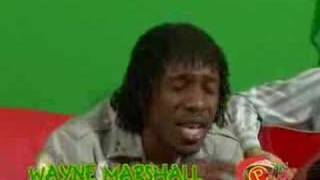 Wayne Marshall - Beauty Is In The Eyes RIDDIM UP GREENSCREEN