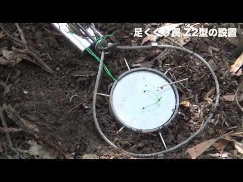 イノシシ•鹿捕獲用 足くくり罠(Z2型)の設置の仕方