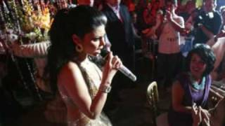 Haifa Wehbe at a charity ball in Beirut on June 20, 2008