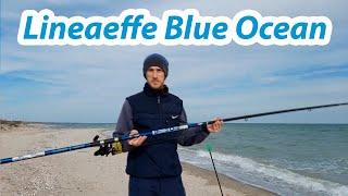 Удилище для ловли пеленгаса Lineaeffe Blue Ocean 4.2м до 250гр.