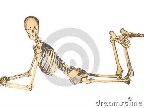 Spooky Scary Skeleton Remix Lyrics