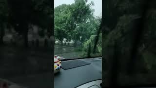 巴生武吉拉惹暴风雨·树倒砸车 招牌乱飞 3/3