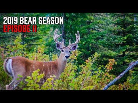Washington Velvet Bucks & Black Bears | 2019 Hunting Season EP.11