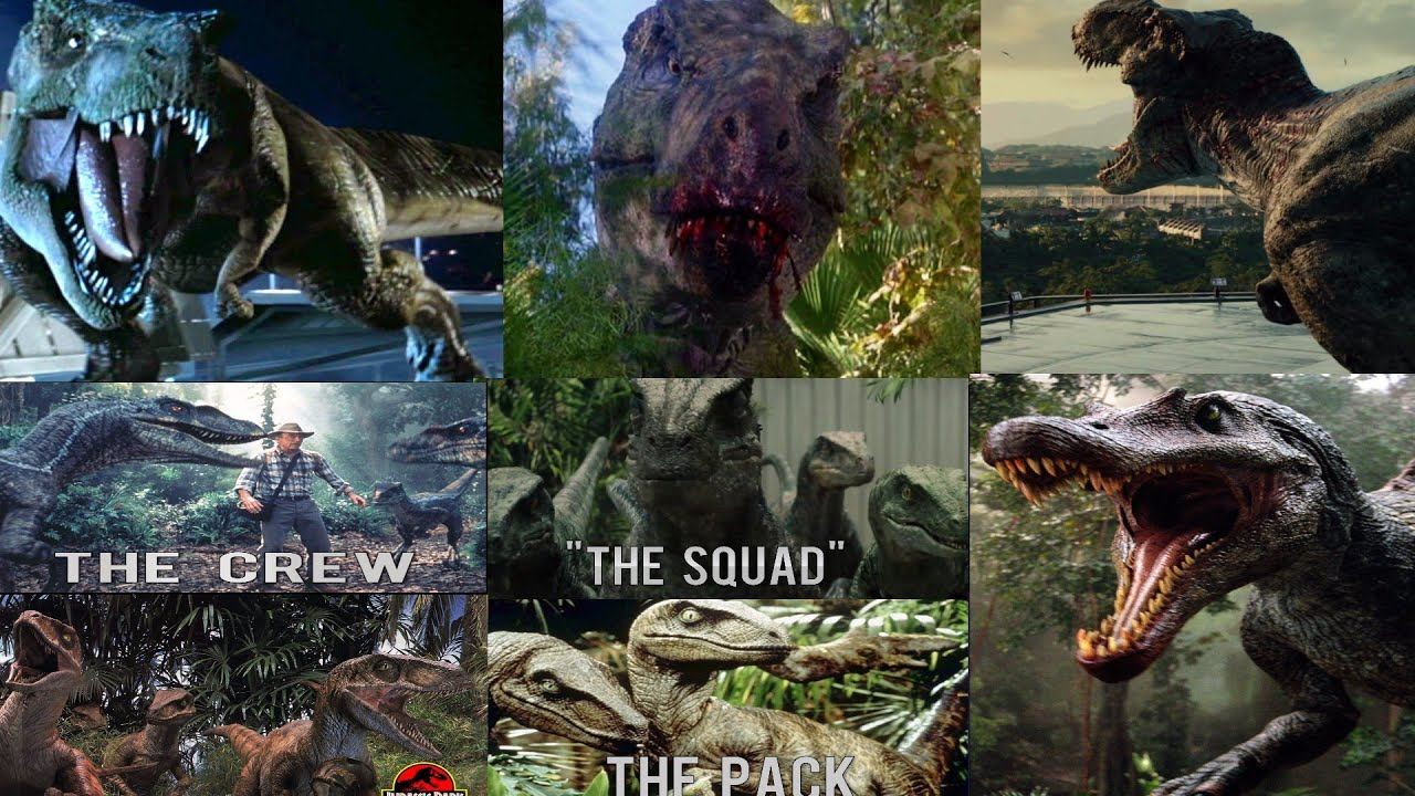 T rex family vs spinosaurus vs velociraptor packs youtube for T rex family