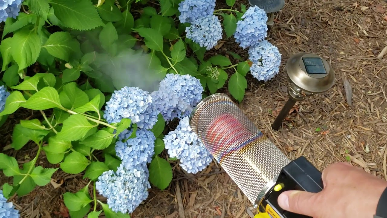 Burgess vs Cutter Backyard Insect Mosquito Fogger Review ...