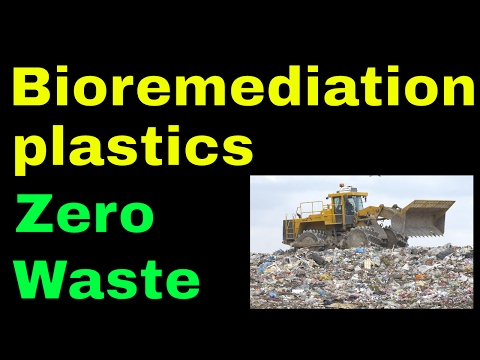 Bioremediation of plastics we can do it GENIUS Olympiad, radical mycology Peter McCoy, Paul Stamets