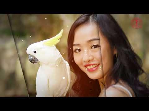 The Third Episode of Miss Malaysia Globe International 2018