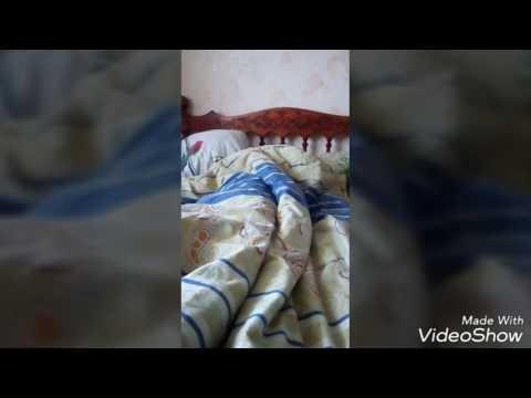Минет видео смотреть pornobosstv